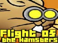 Flight of the Hamster