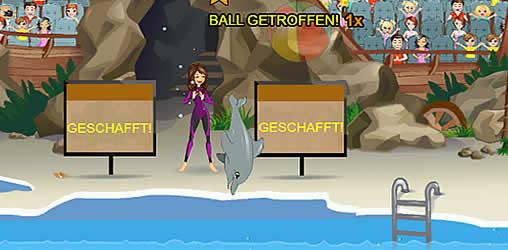 meine delfinshow